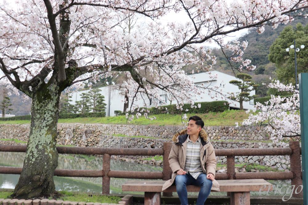 鳥取|鳥取城跡、久松公園 – 鳥取市賞櫻秘境推薦,櫻花盛開與斷壁殘垣之間的美麗