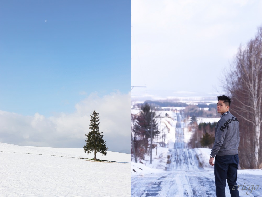 北海道|冬季絕景推薦 – 美瑛之丘「聖誕樹」、上富良野八景「雲霄飛車之路」