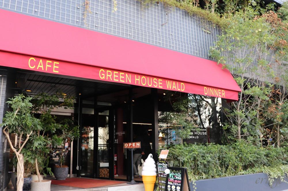神戶|Green House Wald – 三宮站周邊超人氣美食推薦,華麗森林風義式餐點咖啡廳