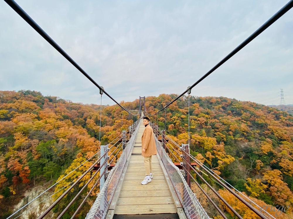 大阪|星田園地「星之鞦韆」- 關西大阪賞楓超秘境,紅葉圍繞的夢幻大吊橋