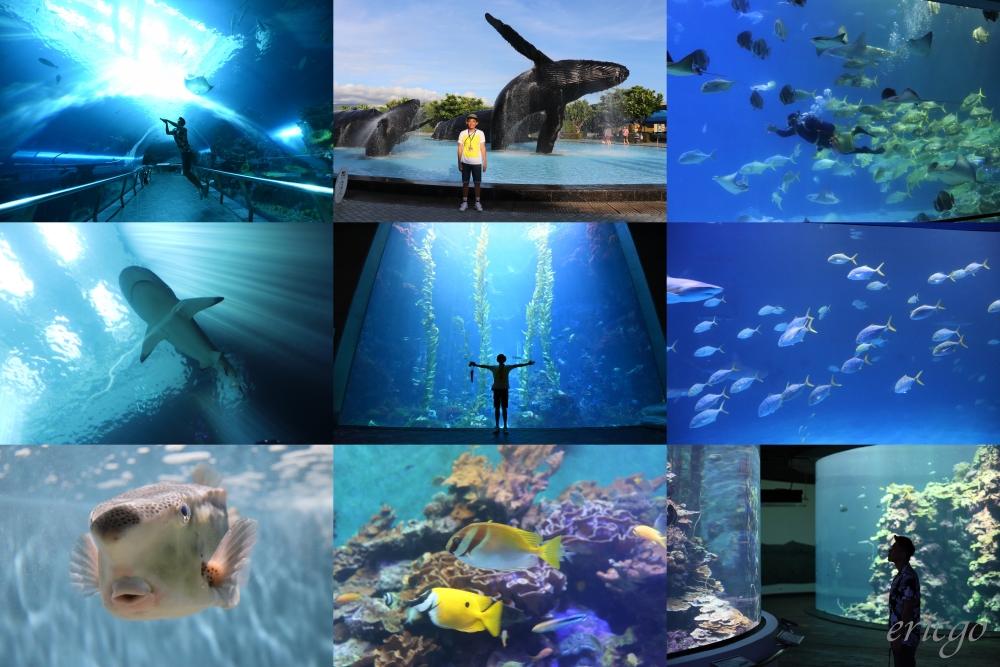 屏東| 國立海洋生物博物館 – 夜宿海生館初體驗,獨享導覽、住宿餐食、費用大公開!