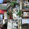 苗栗 南庄一日遊 – 桂花巷、十三間老街、上崁聚落,在地人帶路的南庄秘境特色體驗!