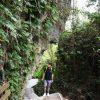 小琉球|山豬溝生態步道 – 滿滿綠意神秘森林景觀,純天然的大型熱帶植物園!