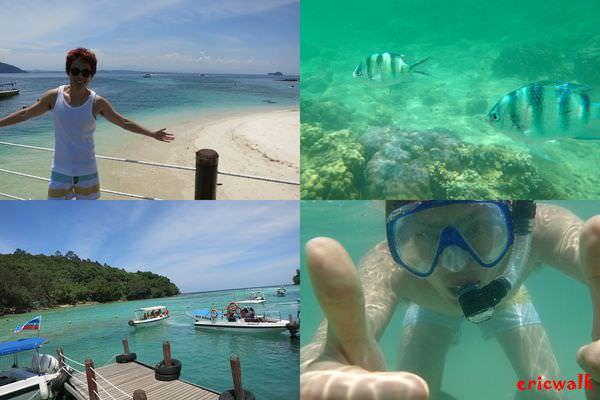 [沙巴] Sapi Island沙比島,魚兒魚兒水中游 – 香格里拉Tanjung Aru飯店Star Marina碼頭、交通資訊費用、浮潛初體驗