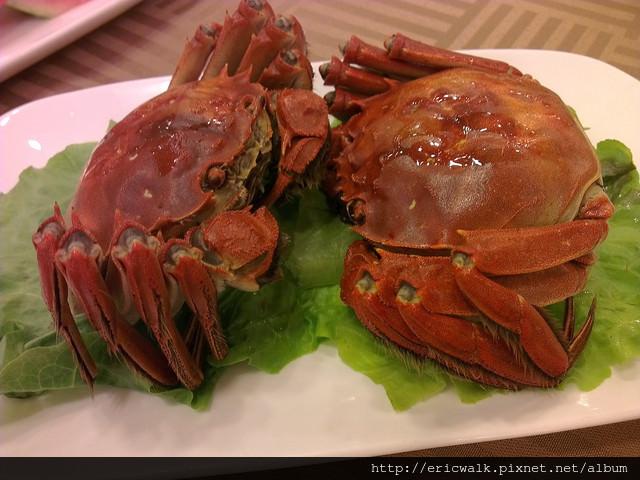 [上海] 瑞福園 – 好吃不貴上海本幫菜餐廳推薦,陽澄湖大閘蟹好美味
